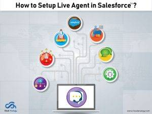How to Setup Live Agent in Salesforce?