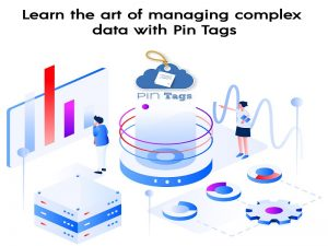 Learn the art of managing complex data with Pin Tags