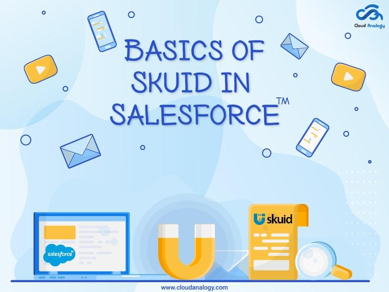 Basics of Skuid in Salesforce