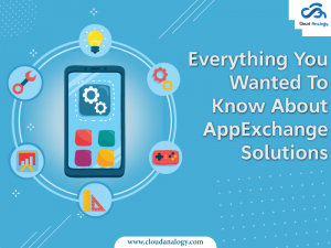 Everything You Wanted To Know About AppExchange Solutions