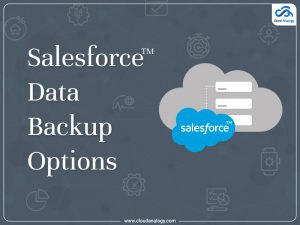 Salesforce Data Backup Options At A Glance