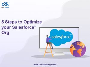 5 Ways to Optimize Your Salesforce Org