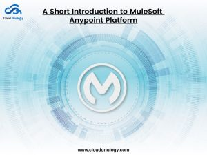 A Short Introduction to MuleSoft Anypoint Platform