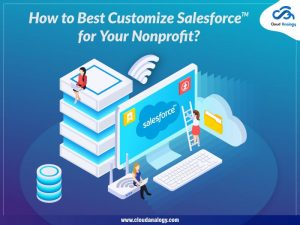How to Best Customize Salesforce for Your Nonprofit?