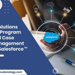 5 Solutions For Program And Case Management By Salesforce