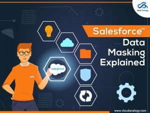 Salesforce Data Masking At a Glance
