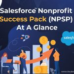Salesforce Nonprofit Success Pack (NPSP) At A Glance