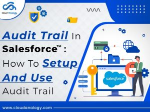 Audit Trail In Salesforce: How to Setup And Use Audit Trail