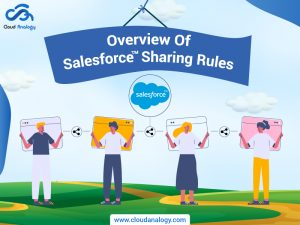 Overview Of Salesforce Sharing Rules