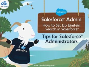 Salesforce Admin – How To Set Up Einstein Search In Salesforce – Tips for Salesforce Administrators