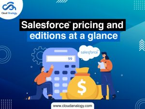 Salesforce Pricing And Editions AT A Glance