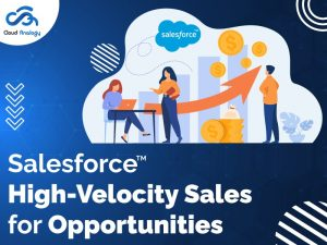 Salesforce High-Velocity Sales for Opportunities