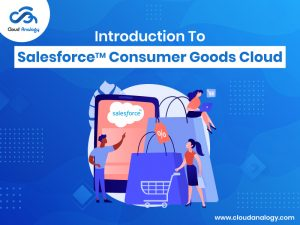 Introduction To Salesforce Consumer Goods Cloud